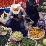 Man in market