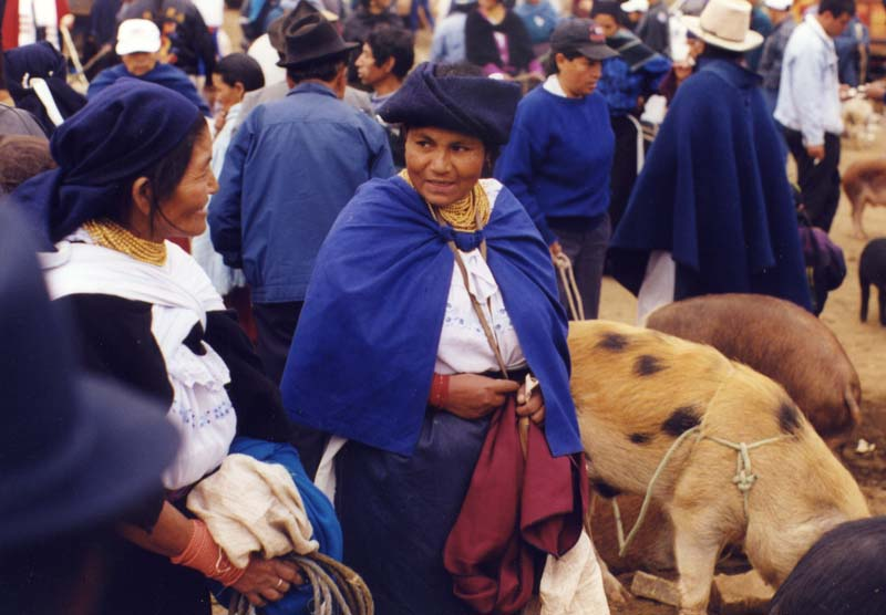 The Pig Market Otavallo