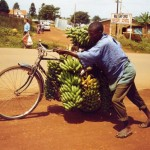 Meals on wheels - Matoke Bananas