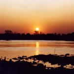 Zambezi Sunset